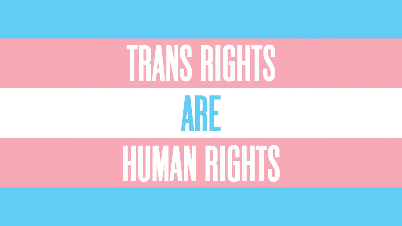 trans rights